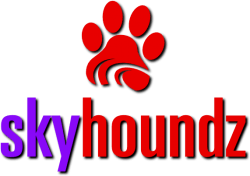 skyhoundz_competitions2